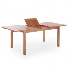 Alisa Teak udtræksbord - 100x200/250/300 cm
